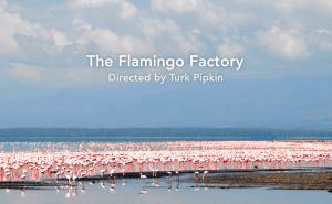 FlamingoFactoryTitleShot