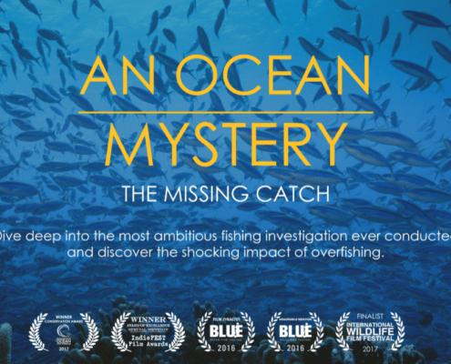 Ocean Mystery