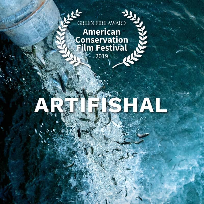 ACFF_AwardWinner_Artifishal