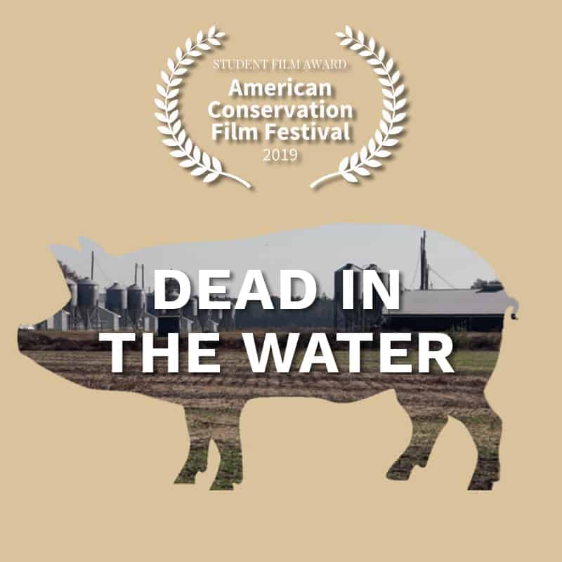ACFF_AwardWinner_Dead-in-the-water