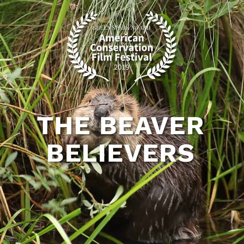 ACFF_AwardWinner_The-Beaver-Believers