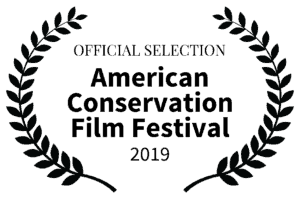 OFFICIALSELECTION-ACFF Large