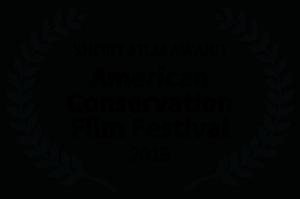 SHORT-FILM-AWARD-ACFF-2019