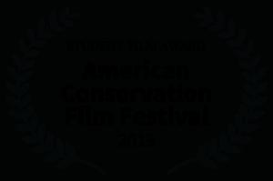 STUDENT-FILM-AWARD-ACFF-2019