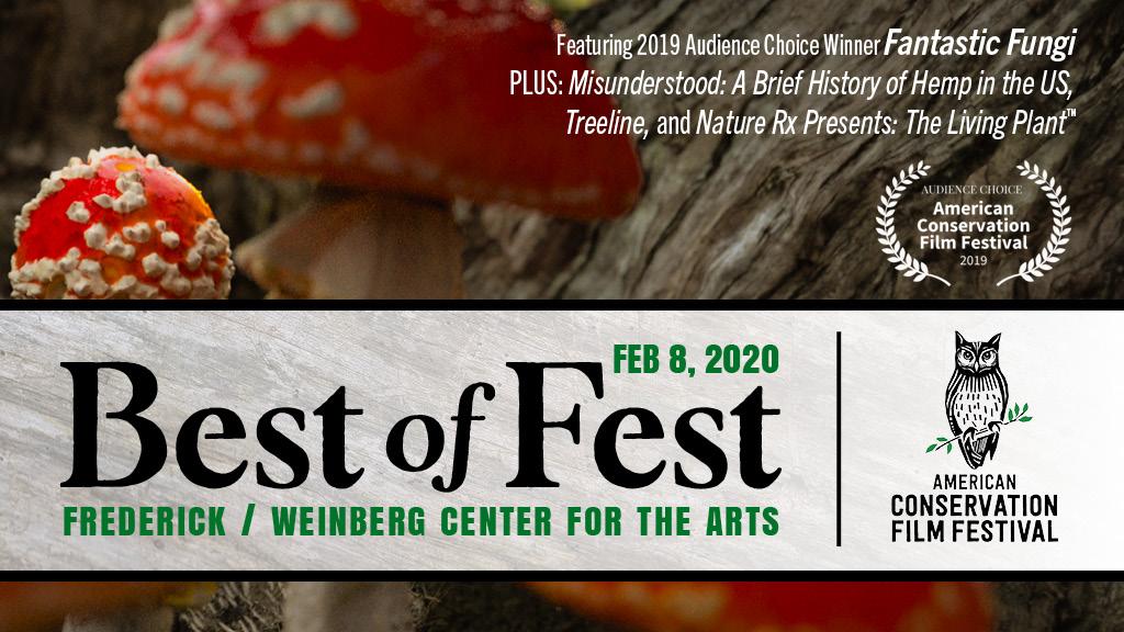 Best of Fest Frederick - Weinberg
