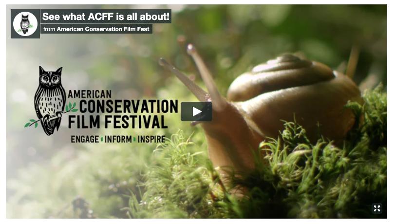 ACFF Trailer