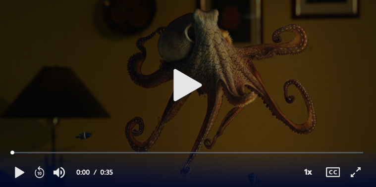 Octopus Making Contact